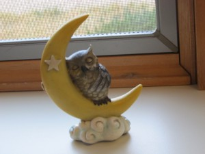 The wise owl sleeps on the moon on window sill at Greencroft