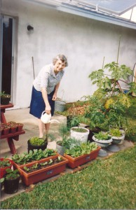 Rhoda watering containers on our back porch in Sarasota - Martin Lehman